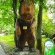 Фото Музей леса в Светлогорске 7