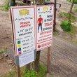 Фото Веревочный Парк в Светлогорске 7