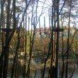 Фото Веревочный Парк в Светлогорске 3