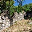 Фото Руины крепости Годлик 4