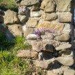 Фото Руины крепости Годлик 5