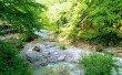 Фото Каньон реки Псахо 4