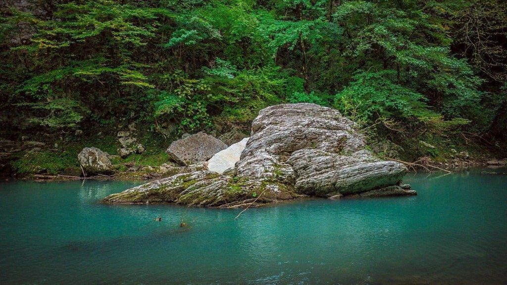 Озеро в Тисо-самшитовой роще