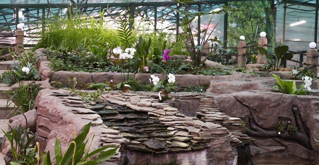 Крытый павильон музея орхидей в Вологде