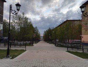 Фото Рябиновая аллея в Мурманске