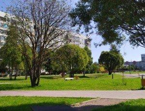 Парк Фрязиновский