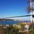 Фото Босфорский мост 7