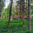 Фото Парк культуры и отдыха имени Гафура Гуляма 9