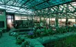 Фото Музей орхидей 1