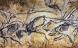 Фото Пещера Шове 1