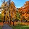 Фото Сад Эрмитаж в Казани 9