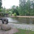 Фото Скульптура «Медведь» в Петрозаводске 8