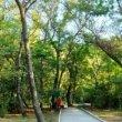 Фото Парк Ленинского комсомола в Махачкале 8