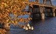 Фото Рыбинский мост через Волгу 3