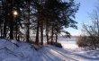 Фото Петровский парк в Рыбинске 6