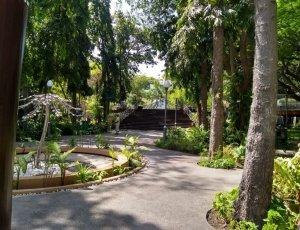 Фото Парк султанов