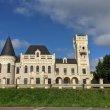 Фото Замок Понизовкина в Красном Профинтерне 6