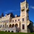 Фото Замок Понизовкина в Красном Профинтерне 5