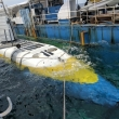 Фото Китовая подводная лодка «Whale Submarine Maldives» 4