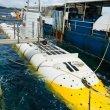 Фото Китовая подводная лодка «Whale Submarine Maldives» 8