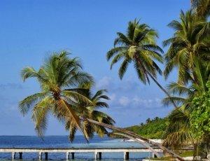 Фото Остров Farukolhufushi
