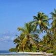 Фото Остров Farukolhufushi 7