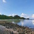 Фото Остров Виллингили 7