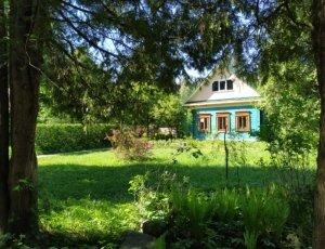 Ботанический Сад ИвГУ