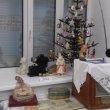 Фото Музей камня Литос-Клио 8