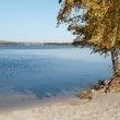 Фото Пляж турбазы «Пески» в Воронеже 9