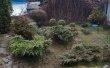 Фото Ботанический Сад ИвГУ 5