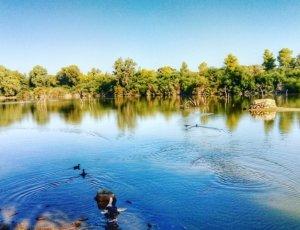 Фото Национальный лесной парк Аталасса