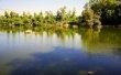 Фото Национальный лесной парк Аталасса 2