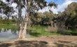 Фото Национальный лесной парк Аталасса 3